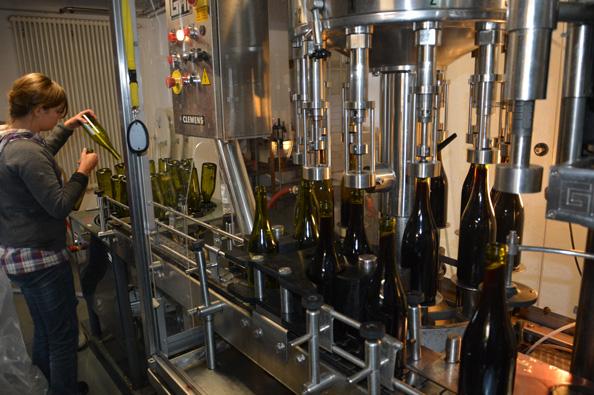 Обладнання для виноробства