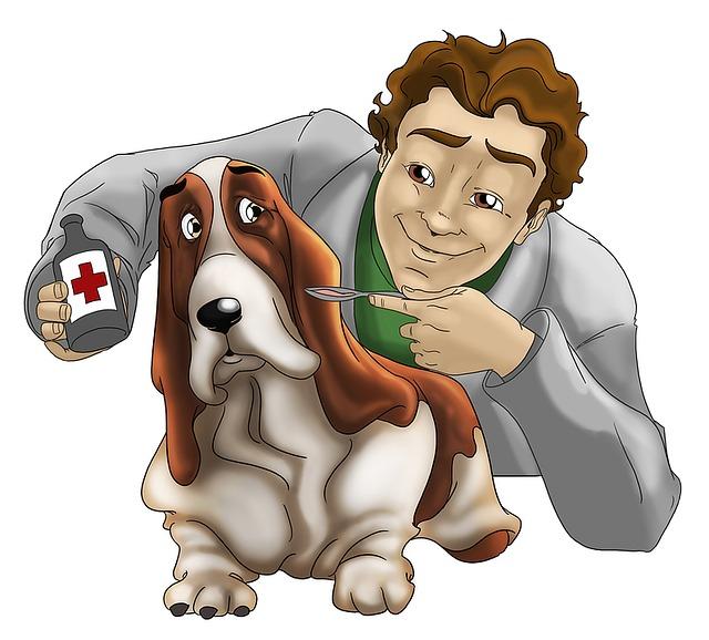 Как делают ветеринарные препараты