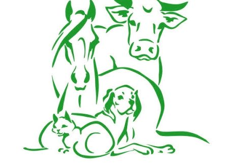 Використання йодовмісних препаратів у ветеринарії